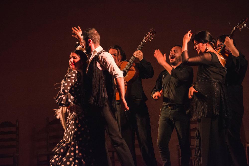 Festival de Flamenco en Jerez de la Frontera